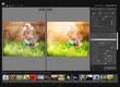 PT Photo Editor - لقطة شاشة (1)